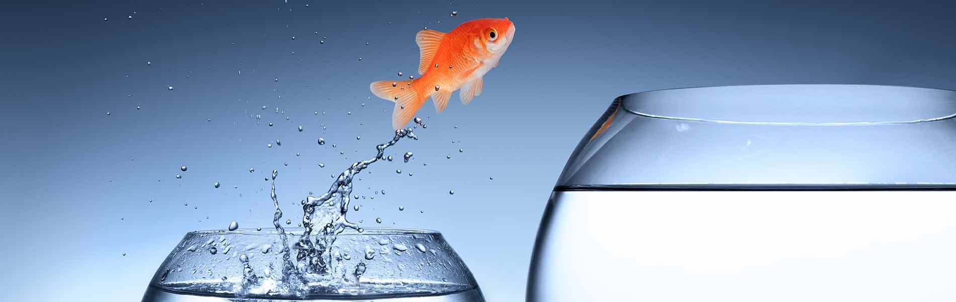 Dynamics 365 Sales CRM, MicroPartner, ERP-overvejelser, CRM-overvejelser
